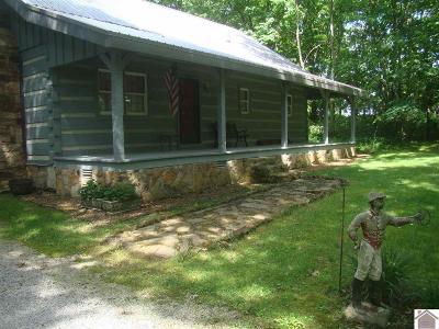 Hopkinsville Single Family Home For Sale: 1120 Harry Berry Lane