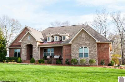 Calloway County, Marshall County Single Family Home For Sale: 1809 Kandi Kay Lane
