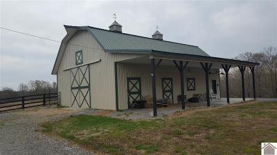 Calloway County Single Family Home For Sale: 455 Snipe Creek Road
