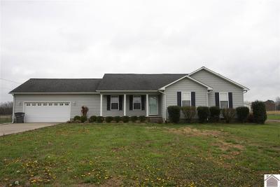 Calloway County Single Family Home For Sale: 132 Washington Dr