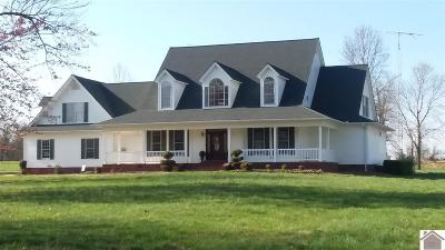 Graves County Single Family Home For Sale: 2346 Old Dublin Road