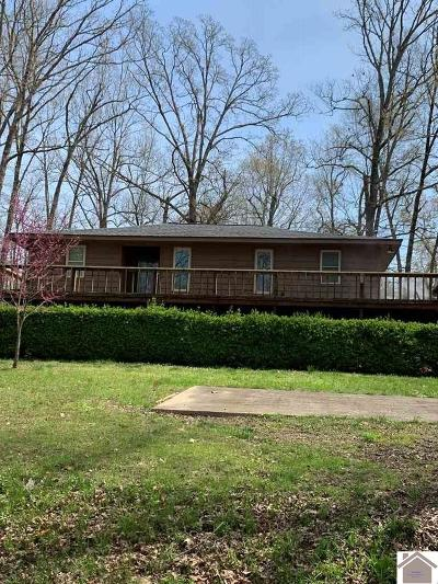 Calloway County, Marshall County Single Family Home For Sale: 56 Cape Fair