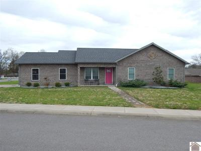 Calloway County Single Family Home For Sale: 9 Tumbler Dr