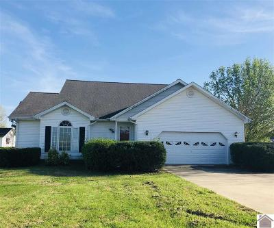 Benton Single Family Home Contract Recd - See Rmrks: 373 Powell Street