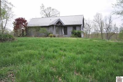 Princeton, Eddyville, Kuttawa, Cadiz Single Family Home For Sale: 472 Green Rd