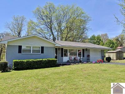 Livingston County Single Family Home For Sale: 395 J H Obryan