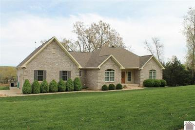 Livingston County, Lyon County, Trigg County Single Family Home For Sale: 337 Peninsula Dr.