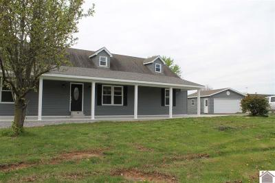 Princeton, Eddyville, Kuttawa, Cadiz Single Family Home For Sale: 87 Lake Scene Dr
