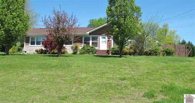 Princeton, Eddyville, Kuttawa, Cadiz Single Family Home For Sale: 1565 Old Kuttawa Rd
