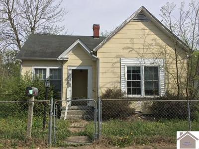 McCracken County Single Family Home For Sale: 168 Clements St