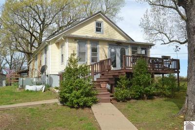 Princeton, Eddyville, Kuttawa, Cadiz Single Family Home For Sale: 4485 N State Route 295