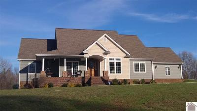 Calloway County, Marshall County Single Family Home For Sale: 8166 Brewers Hwy