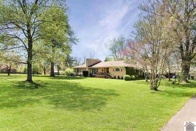 Calloway County, Marshall County Single Family Home For Sale: 353 Neale Trail