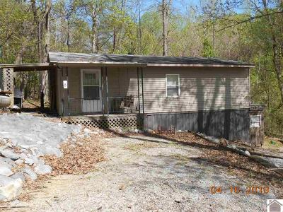 Cadiz KY Manufactured Home For Sale: $29,500