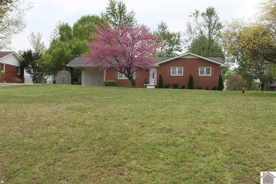Paducah Single Family Home For Sale: 6535 Kentucky Dam Road