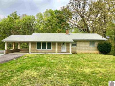 Benton Single Family Home For Sale: 30 Old Olive Rd.