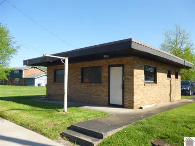 McCracken County Commercial For Sale: 2024 Park Ave