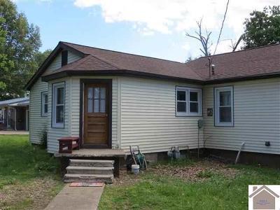 Ballard County Single Family Home For Sale: 669 Olive Street