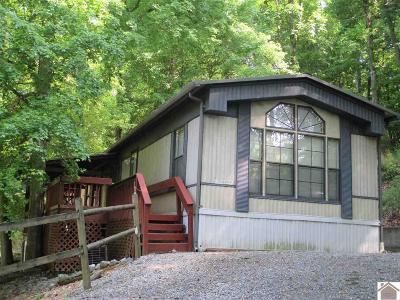 Eddyville Manufactured Home For Sale: 96 Thrush Lane