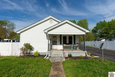Marshall County Single Family Home For Sale: 1306 Birch Street