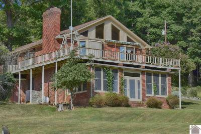 Single Family Home For Sale: 363 Partridge Pt