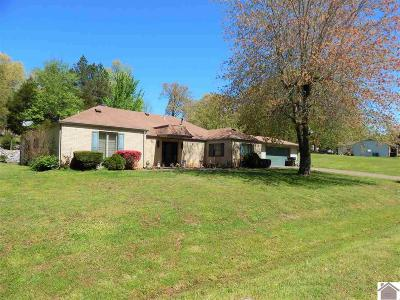 Calvert City KY Single Family Home For Sale: $169,900