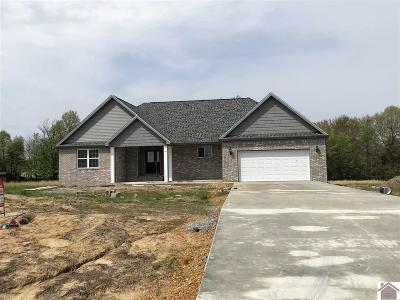 Hickory Single Family Home Contract Recd - See Rmrks: 119 Michael Dale Drive
