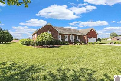 Calloway County Single Family Home For Sale: 69 Dunlap Drive