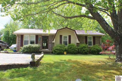 Murray Single Family Home For Sale: 1204 Melrose Drive