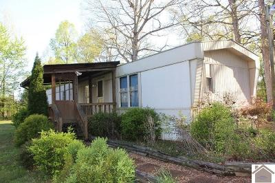 Manufactured Home For Sale: 737 Scott Fitts