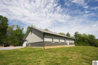 Calloway County Single Family Home For Sale: 3038 Liberty Rd