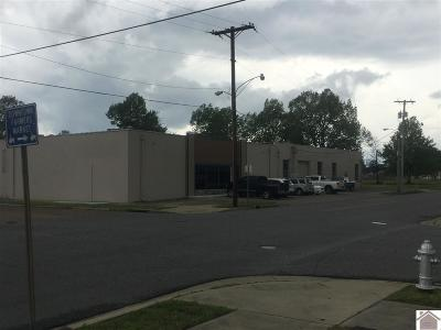 McCracken County Commercial For Sale: 1301 Monroe St
