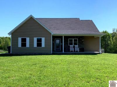 Livingston County, Lyon County, Trigg County Single Family Home For Sale: 1050 Mitchell Road