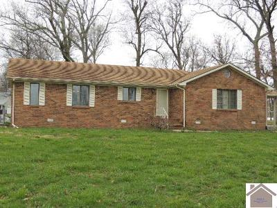 Hickory Single Family Home For Sale: 7489 St Rt 1241