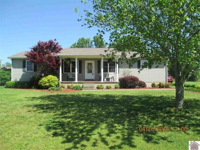 Mayfield Single Family Home Contract Recd - See Rmrks: 172 Reece Rd.