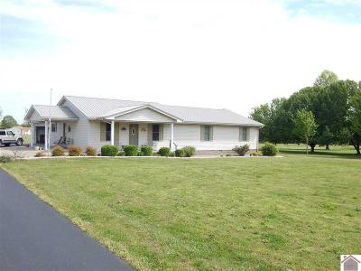 Marshall County Single Family Home For Sale: 103 Morning Sun Road
