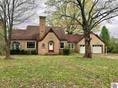 Hazel Single Family Home For Sale: 4437 S Us Highway 641