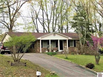 Kuttawa Single Family Home For Sale: 515 Magnolia