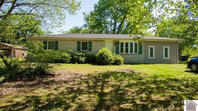 Livingston County Single Family Home For Sale: 265 Marsha Drive