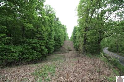 Residential Lots & Land For Sale: Maple Grove Road