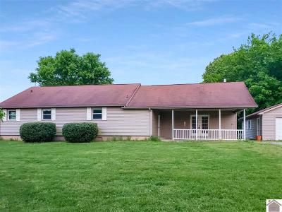 Hickory Single Family Home For Sale: 1992 Tim Rd