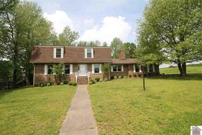 Paducah Single Family Home For Sale: 555 Fairview Drive