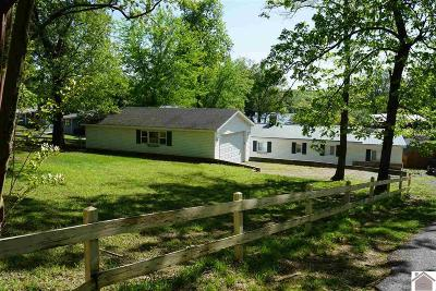 Marshall County Single Family Home For Sale: 33 Duplex Lane