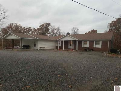 Caldwell County, Calloway County, Livingston County, Marshall County, Trigg County Single Family Home For Sale: 90 Hickory Hill Lane