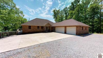 Caldwell County, Calloway County, Livingston County, Marshall County, Trigg County Single Family Home For Sale: 105 Oakview Lane