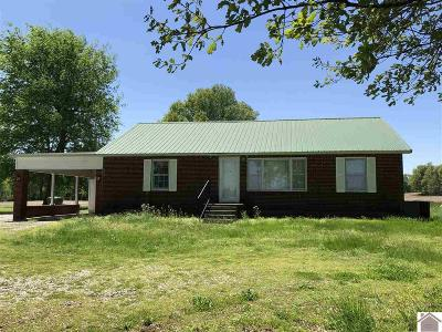 Hickory Single Family Home For Sale: 5887 State Route 1241
