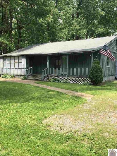 Marshall County Single Family Home For Sale: 187 Oaklawn Ln
