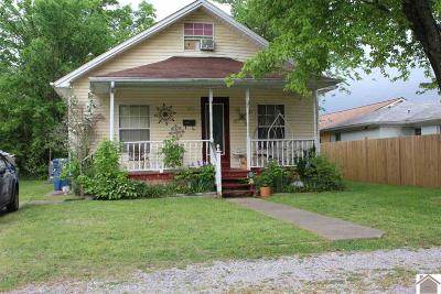 Murray Single Family Home For Sale: 513 Beale
