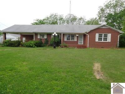 Mayfield Single Family Home For Sale: 211 St Rt 131