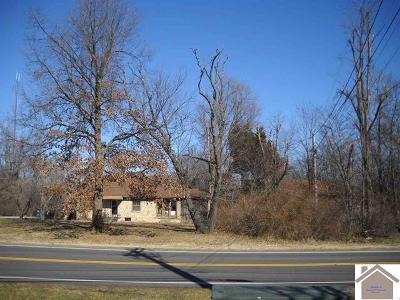 McCracken County Commercial For Sale: 709 Bleich Road